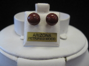 AZ Petrified Wood Earrings