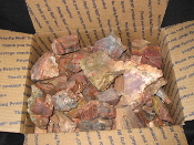 Rough AZ Petrified Wood