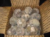 Large box of Rough Geodes