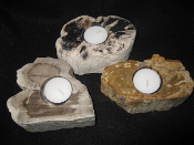 Indonesian Petrified Wood Candle holders