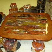 AZ Petrified Wood Table