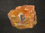 Sprayed AZ Petrified Wood