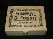 Mineral & Fossil Collection Box