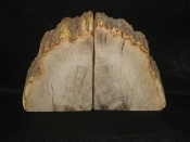 Indonesian Petrified Wood Bookends