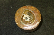 Ammonite Box