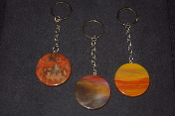 AZ Petrified Wood Circle Key Rings