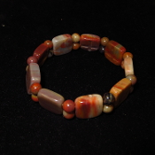 AZ Petrified Wood Stretchy Bracelet
