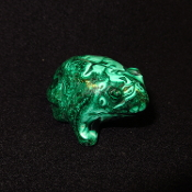 Malachite Frogs