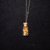 AZ Petrified Wood Bottle Necklace